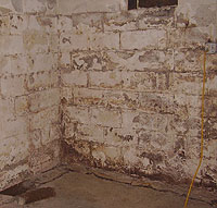 efflorescence basement