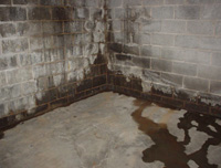 leaky basement walls in ohio damp basement walls waterproofing in